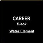 VB Career